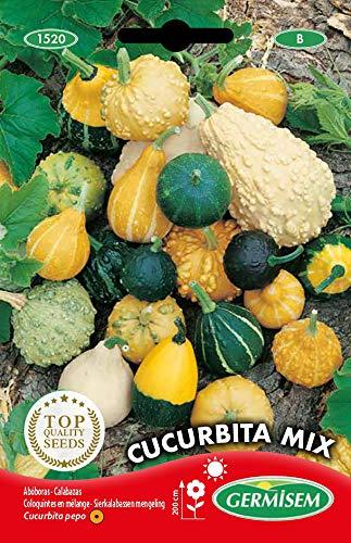 Germisem Cucurbita Mix Semillas de Calabaza 2 g