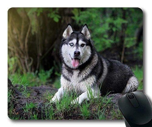 Gaming-Mousepads, ideal für Hundehundetelefon, Präzisionsnaht, Robuste Mausunterlage