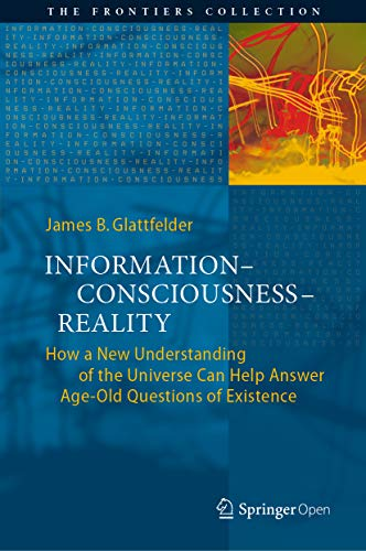 Information—Consciousness—Reality: How a New Understanding of the Universe Can Help Answer Age-Old Questions of Existence (The Frontiers Collection) (English Edition)