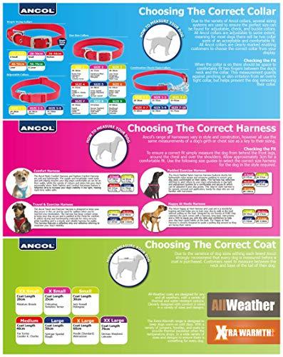 Ancol Muddy Paws Storm Guard - Abrigo para Perro, Color Rosa