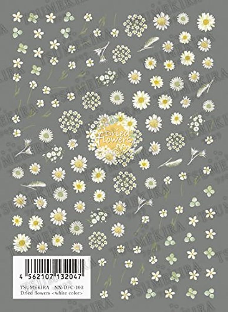 フェロー諸島強調する終わらせるTSUMEKIRA Dried flowers white color NN-DFC-103