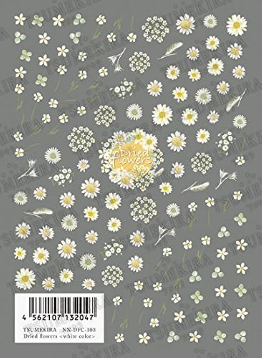 デンマーク語寝室を掃除する主TSUMEKIRA Dried flowers white color NN-DFC-103