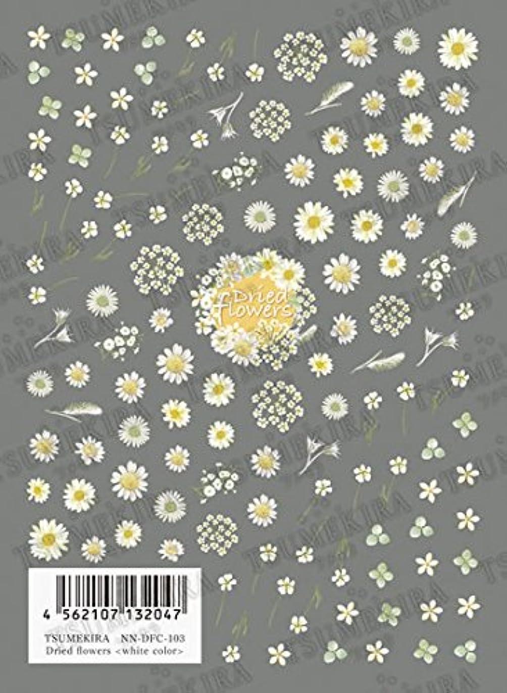 焼くハブ例TSUMEKIRA Dried flowers white color NN-DFC-103