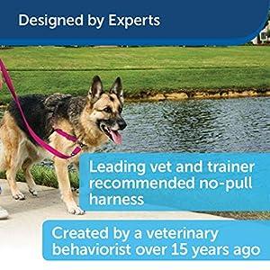 PetSafe Easy Walk Dog Harness, No Pull Dog Harness, Raspberry/Gray, Medium