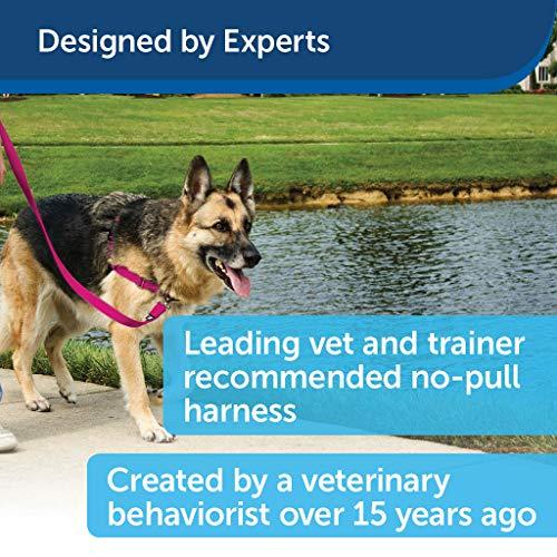 PetSafe Easy Walk Dog Harness, No Pull Dog Harness, Royal Blue/Navy Blue, Medium