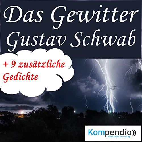 Das Gewitter audiobook cover art