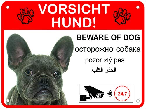 LUGUNO Hundeschilder Warnung 5-sprachig Vorsicht Hund Schild Alu (20x15cm - Bulldoge)