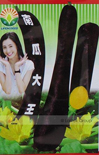 Noir Graines long Doux Citrouille, emballage d'origine, 20 graines / Pack, légumes biologiques jaune intérieur Retour peau # BN00008