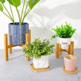 Modern Wood Indoor Plant Stand - EXCLUDING Plant Pot, Mid Century Wood Flower Pot Holder Potted Stand Indoor Display Rack Rustic Decor