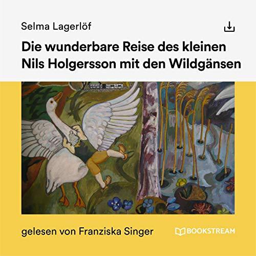 Die wunderbare Reise des kleinen Nils Holgersson mit den Wildgänsen Titelbild