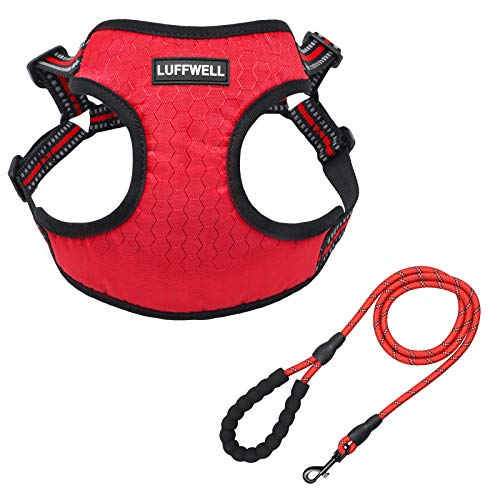 Small Dog Harness Leash Set, No Pull Soft Breathable Mesh Puppy Vest Harness with 4 Adjustable Buckles, Reflective Easy Control for Small Medium Large Dog and Cat with A Free Heavy Duty 5FT Dog Leash