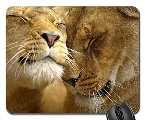 Lion family Mouse Pad, souris (Cats Mouse Pad)