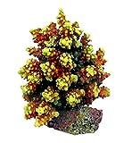 AQL Decoración Coral de Resina para Acuario Modelo Acropora 7 cm 6 x 6 x 8 h