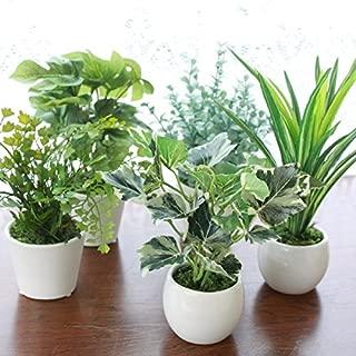 山久 インテリアグリーン ミニポット 5点アソートセット 1410-6039 CT触媒加工 人工観葉植物 造花