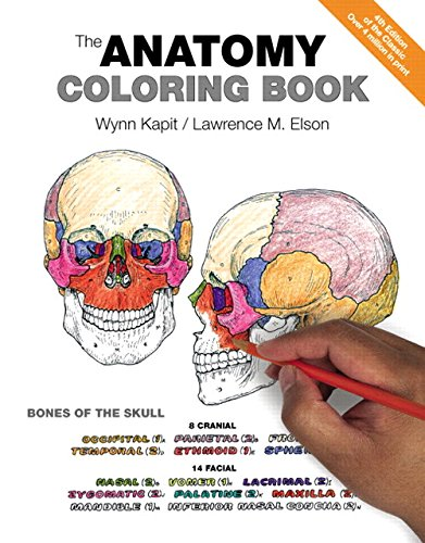 29 Best Anatomy Coloring Books Of All Time Bookauthority