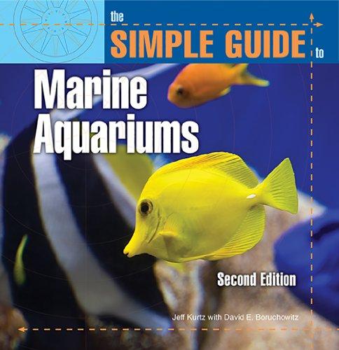 Best Places To Buy Aquarium Fish