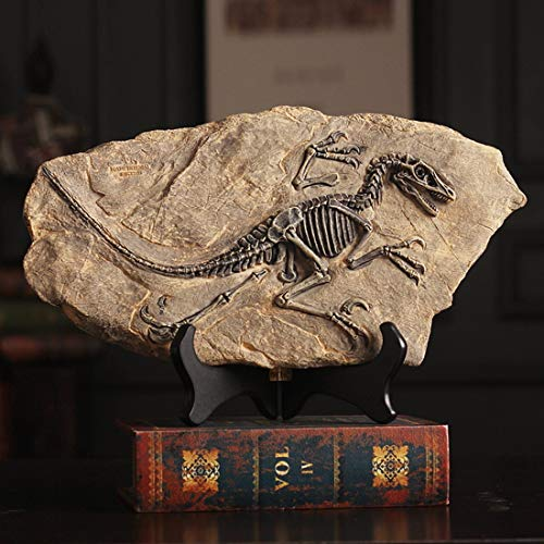 XINDAM Resin Dinosaur Fossil Statue Model Simulated Skeleton Home Office Display Decorative Craft Box Decoration (Style 2)