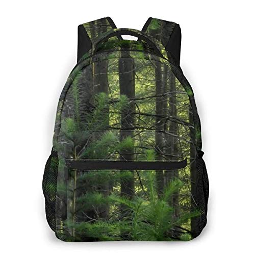 Lawenp Fashion Unisex Backpack Nature Green Forest Bookbag Lightweight Laptop Bag for School Travel Outdoor Camping
