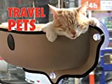 Clip: Travel Pets