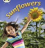 Bug Club Phonics Non Fiction Year 1 Phase 5 Set 20 Sunflowers (Phonics Bug)