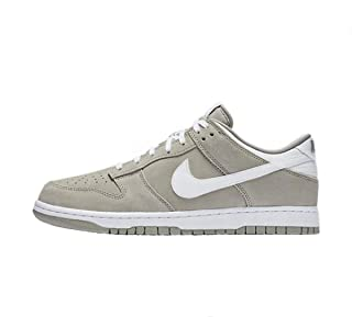 Mens Nike Dunk Low Shoe