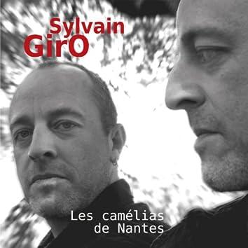Les Camélias De Nantes