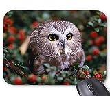 """Tamaño de la alfombrilla: 8.3""""x10.3""""( 210mm x 260mm x 3mm)), 1 * alfombrilla de ratón. Excelente para todos los tipos de mouse. Patrones únicos, colores vibrantes, la mejor idea de regalo. La superficie inferior de goma Natura antideslizante agarra f..."""