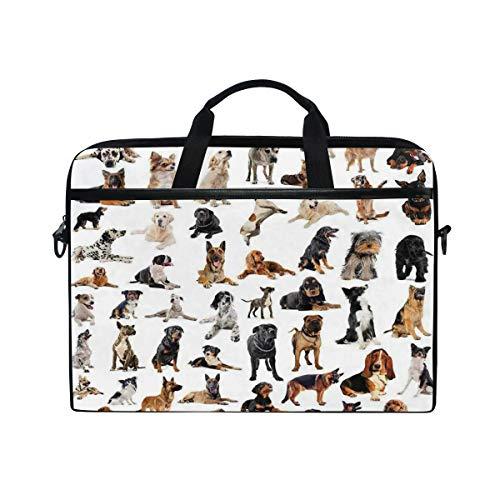 LOSNINA Laptop Tasche 15-15.4 Zoll,Zusammengesetztes reinrassigem Hundeaustralischer Schäferhund belgischer Boxer Italienischer Stammbaum,Drucken Muster Aktentasche Schulter Messenger Handtasche