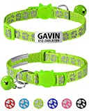 Taglory Reflective Cat Collar Personalized with Name and Number, Cat Collars Breakaway with Bell and ID Tag, 7.5-12.5' Green