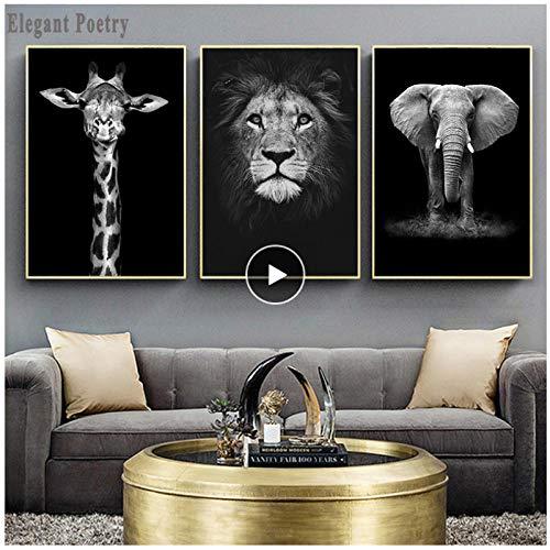 Generic Elefant Zebra Löwe Giraffe Nashorn Schwarz Weiß Tier Leinwand Malerei Kunstdruck Poster Bild Wand Nordic Dekoration 60x80 cm Kein Rahmen