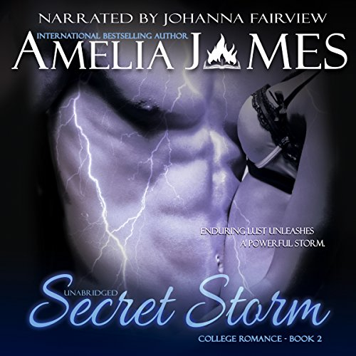 Secret Storm audiobook cover art