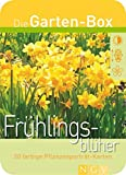 Frühlingsblüher. Die Garten-Box. 50 farbige Pflanzenporträt-Karten