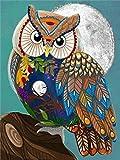 ZUIAIIUYA Pintar por Numeros Adultos Niños DIY Pintura por Números con Pinceles Y Pinturas,Regalos De Decoración del Hogar-Búho De Dibujos Animados(16 * 20 Pulgadas, Sin Marco)