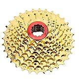 Bici FreeWheel Cassette de velocidad de ciclismo 10 Velocidad 36T Hollow Sprocket Gear FreeWheel Conjunto Ciclismo Accesorio de reemplazo