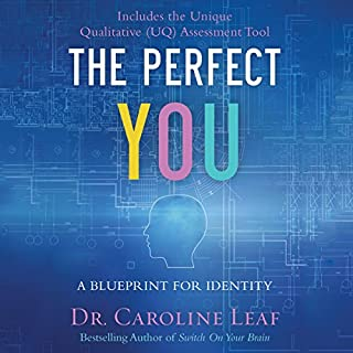 The Perfect You Titelbild