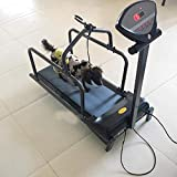 Zakjj Dog Treadmill, Fitness Pet Treadmill Indoor Exercise, Pet Exercise Equipment, With Display Screen, Suitable For Small/Medium-Sized Dogs