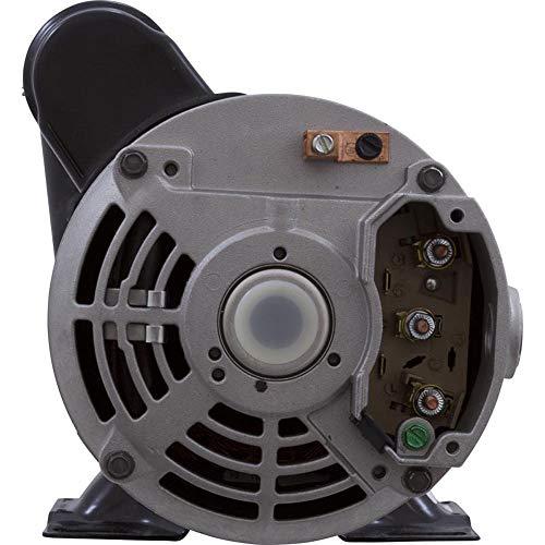 Gecko Aqua-Flo 06115517-2040 Flo-Master 1.5HP 2 Speed 230V XP2 Spa Pump
