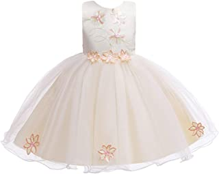 Luxury Princess Dress Embroidered Skirt Solid Color Dress Children in Europe and America Girls Gauze Dress Children Dress Baby Christening Dress Costumes ryq (Color : Champagne, Size : 90cm)