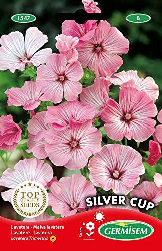 Germisem Silver Cup Semillas de Malva 2 g (EC1547)