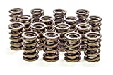 Isky Racing Cams Automotive Replacement Engine Spring Retainers