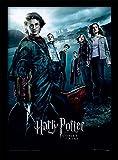 Pyramid International Harry Potter (Goblet of Fire) 30x40
