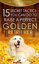Golden Retriever: 15 Secret Tactics You Can Do to Raise a Perfect Golden Retriever
