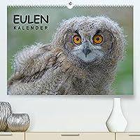 Eulen-Kalender (Premium, hochwertiger DIN A2 Wandkalender 2022, Kunstdruck in Hochglanz): Faszinierende Portraits und Flugaufnahmen europaeischer Eulen (Monatskalender, 14 Seiten )