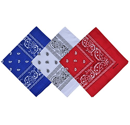 Raylarnia Paisley 3 piece Assorted Cowboy Bandanas Cotton 22 x 22 inch (one size, White/Red/Royal blue)