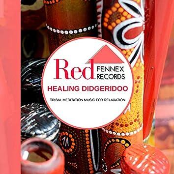 Healing Didgeridoo - Tribal Meditation Music For Relaxation