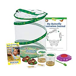 small Butterfly Garden Insects: Two live caterpillar cups with original habitat and STEM …