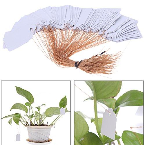"""Pack 100 X 5/"""" blanc étiquettes de plantes jardin//serre Gardman"""