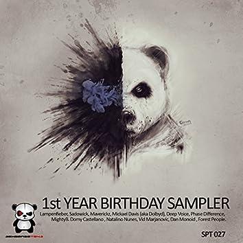 1st Year Birthday Sampler