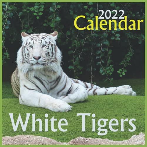 Calendario 2022 de Tigres Blancos, calendario oficial de 2022, calendario de 12 meses, calendario 2022 con animales salvajes, gatos...
