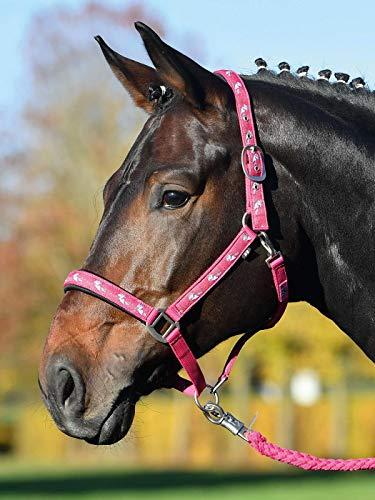 Busse Halfter Einhorn II, Warmblut, pink